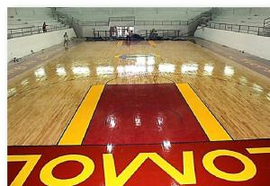 MUNICIPAL GYM OF POLOMOLOK, SOUTH COTABATO HARDWOOD SURFACE