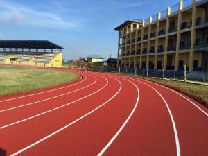 NUEVA ECIJA UNIVERSITY OF SCIENCE AND TECHNOLOGY SEAMLESS SYNTHETIC RUBBER SURFACE