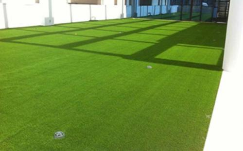 FRABELLE BUSINESS CENTER, MAKATI CITY ARTIFICIAL TURF SURFACE