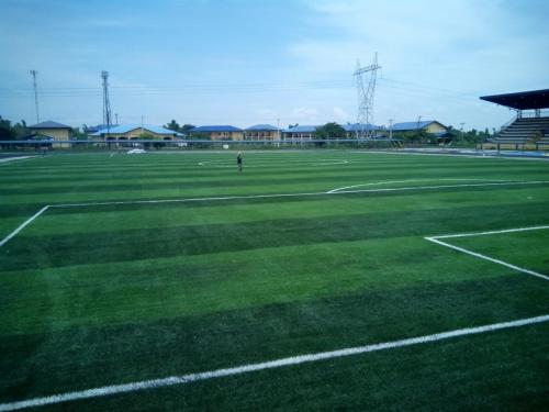 NUEVA ECIJA UNIVERSITY OF SCIENCE AND TECHNOLOGY ARTIFICIAL TURF SURFACE